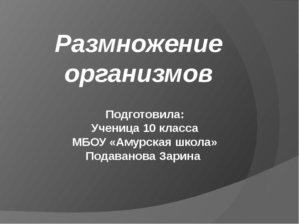 Размножение организмов Подготовила: Ученица 10 класса МБОУ «Амурская школа» П...