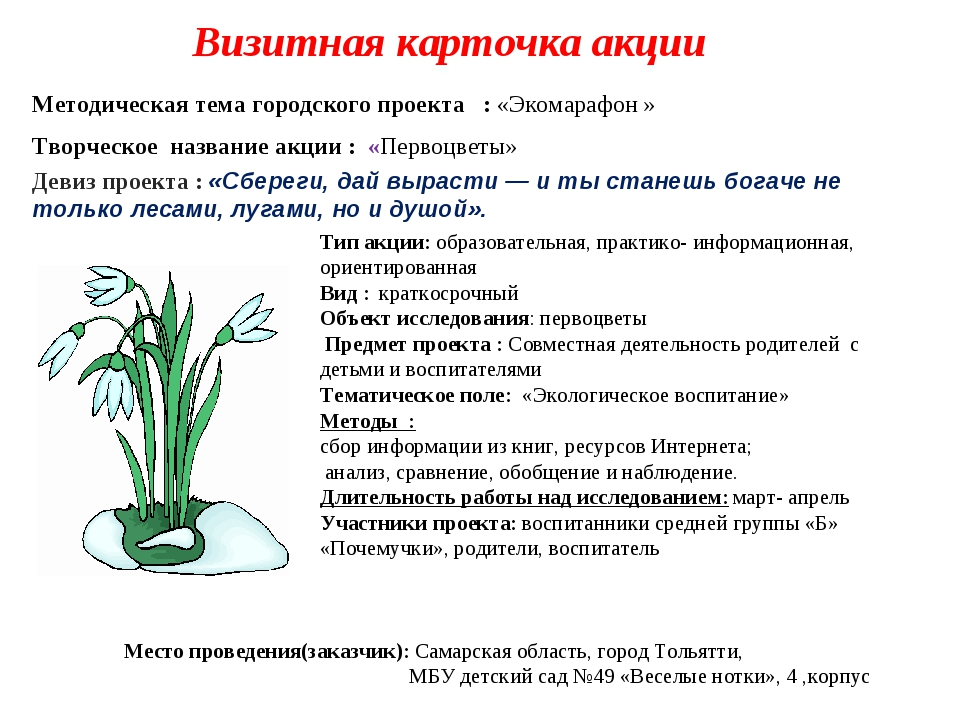 Визитная карточка акции Творческое название акции : «Первоцветы» Девиз проек...