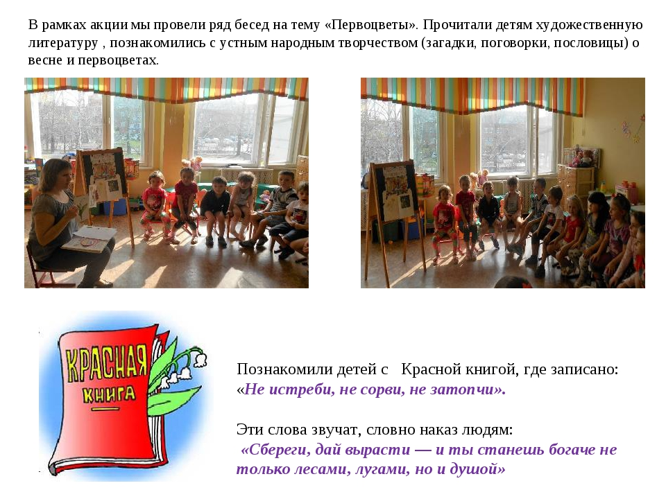 В рамках акции мы провели ряд бесед на тему «Первоцветы». Прочитали детям худ...