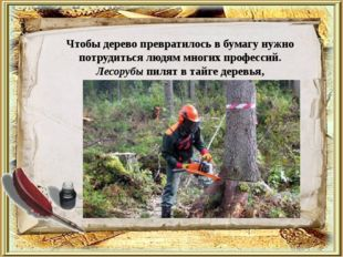 Чтобы дерево превратилось в бумагу нужно потрудиться людям многих профессий.