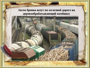Затем бревна везут по железной дороге на деревообрабатывающий комбинат