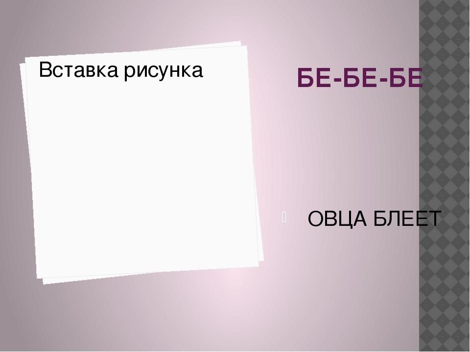 БЕ-БЕ-БЕ ОВЦА БЛЕЕТ