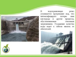 В водохранилищах резко усиливается прогревание вод, что интенсифицирует потер