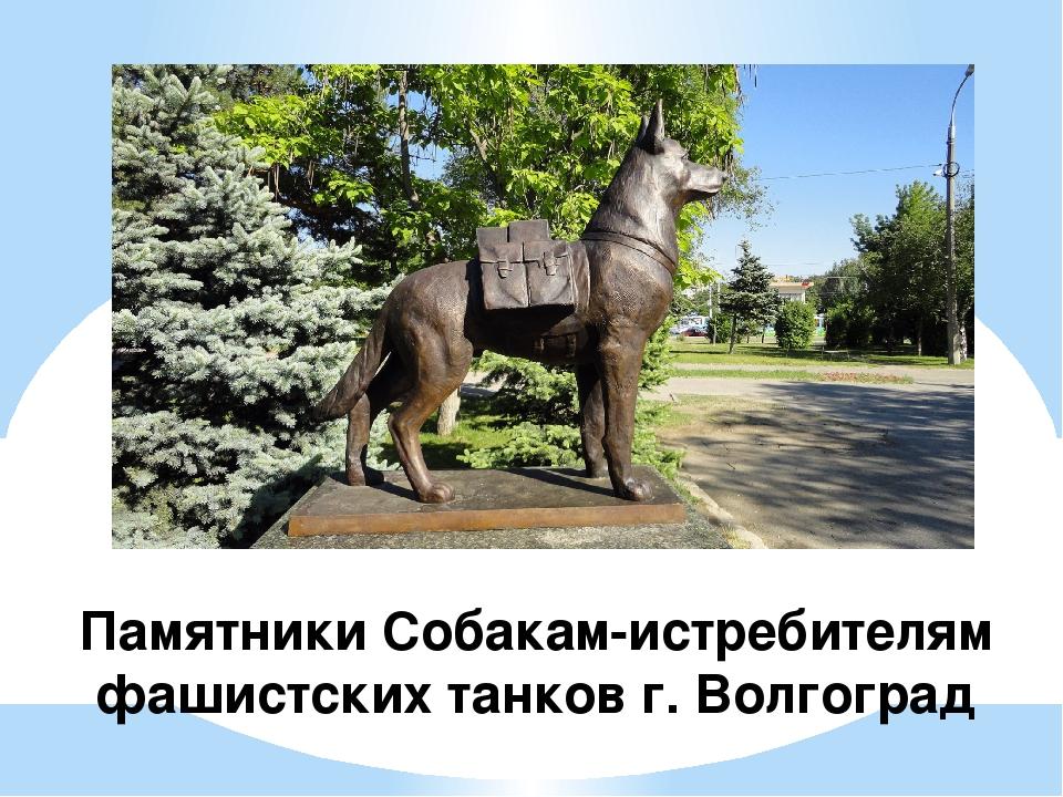 Памятники Собакам-истребителям фашистских танков г. Волгоград