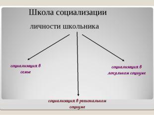 Школа социализации личности школьника социализация в семье социализация в лок