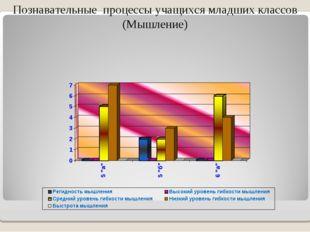 Познавательные процессы учащихся младших классов (Мышление)