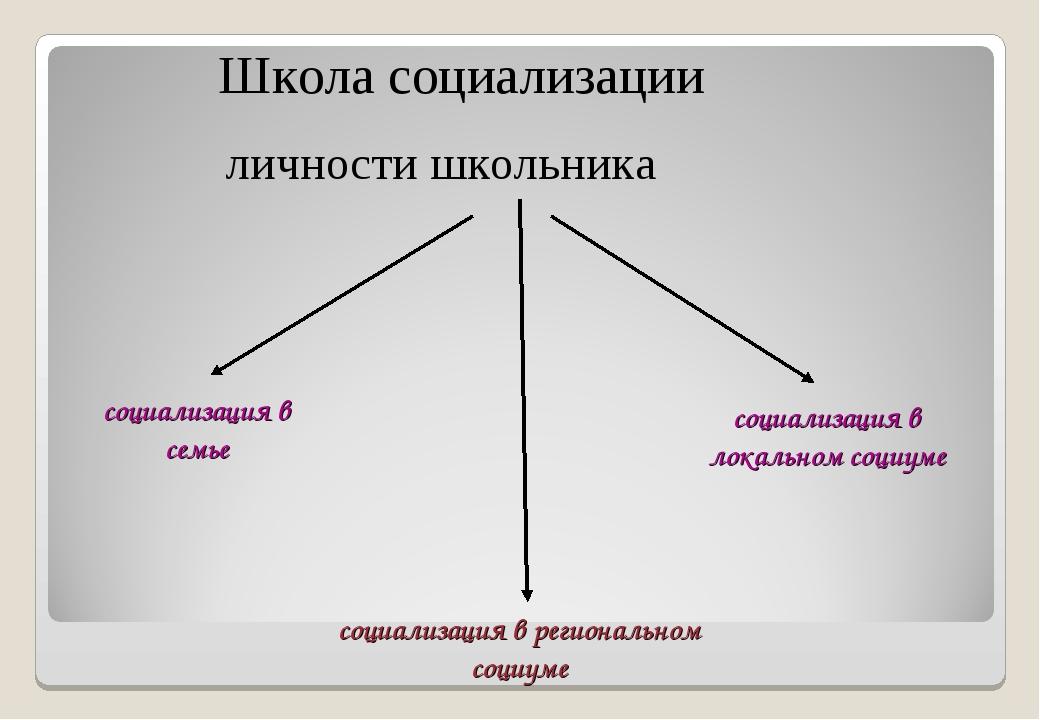 Школа социализации личности школьника социализация в семье социализация в лок...