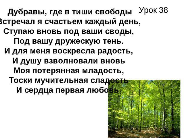 Урок 38 Дубравы, где в тиши свободы Встречал я счастьем каждый день, Ступаю в...