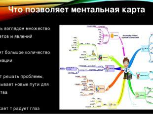 Что позволяет ментальная карта -охватить взглядом множество предметов и явлен