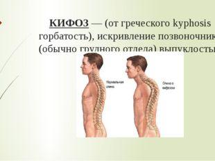 КИФОЗ— (от греческого kyphosis горбатость), искривление позвоночника (обычно