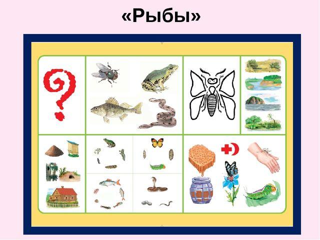 «Рыбы»