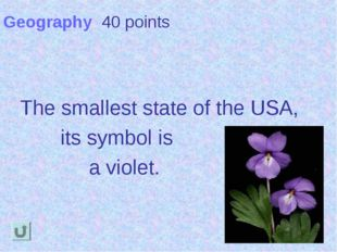 Geography 40 points The smallest state of the USA, its symbol is a violet.