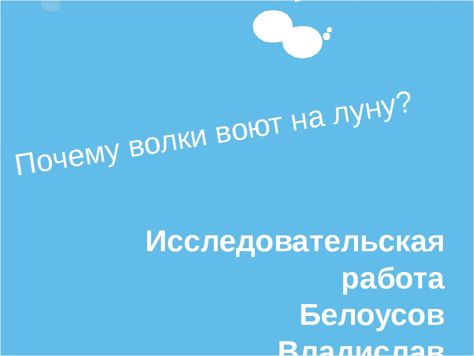 Почему волки воют на луну? Исследовательская работа Белоусов Владислав 4 «Б»...