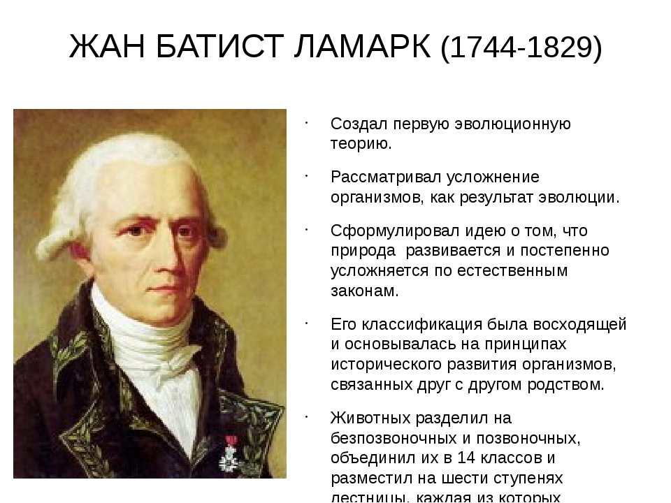 ЖАН БАТИСТ ЛАМАРК (1744-1829) Создал первую эволюционную теорию. Рассматривал...