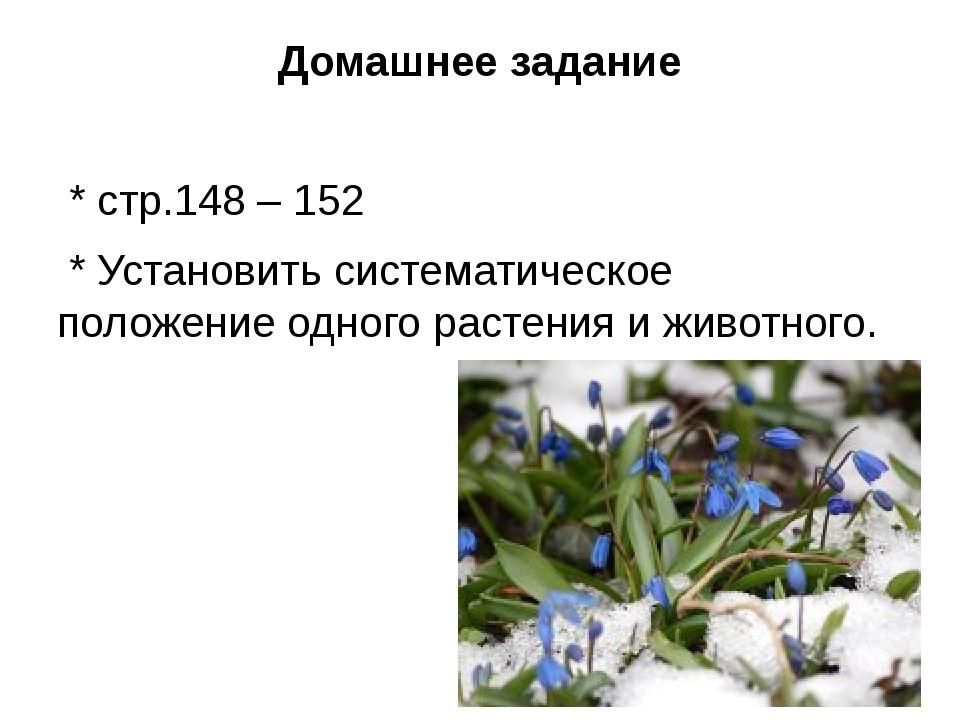 Домашнее задание * стр.148 – 152 * Установить систематическое положение одног...
