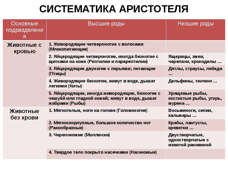 СИСТЕМАТИКА АРИСТОТЕЛЯ Основные подразделения Высшие роды Низшие роды Животны...