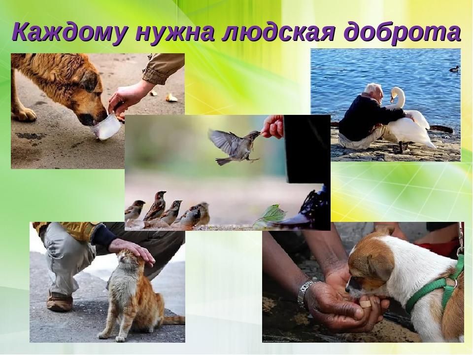 Каждому нужна людская доброта
