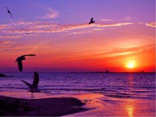 Роскошный закат солнца на море невольно наводит на мысль — как на картине.