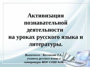 Активизация познавательной деятельности на уроках русского языка и литературы