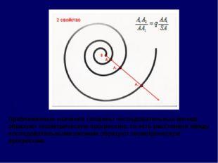 Приближенные значения толщины последовательных витков образуют геометрическую