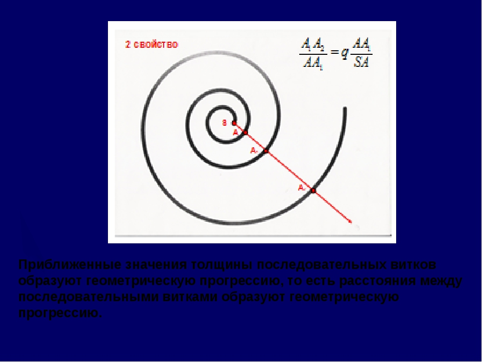 Приближенные значения толщины последовательных витков образуют геометрическую...