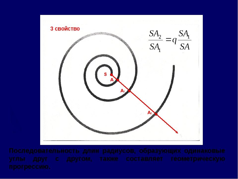 Последовательность длин радиусов, образующих одинаковые углы друг с другом, т...