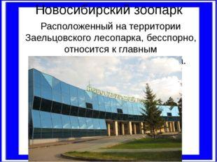 Новосибирский зоопарк Расположенный на территории Заельцовского лесопарка, бе