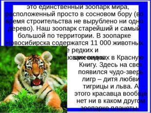 это единственный зоопарк мира, расположенный просто в сосновом бору (во врем