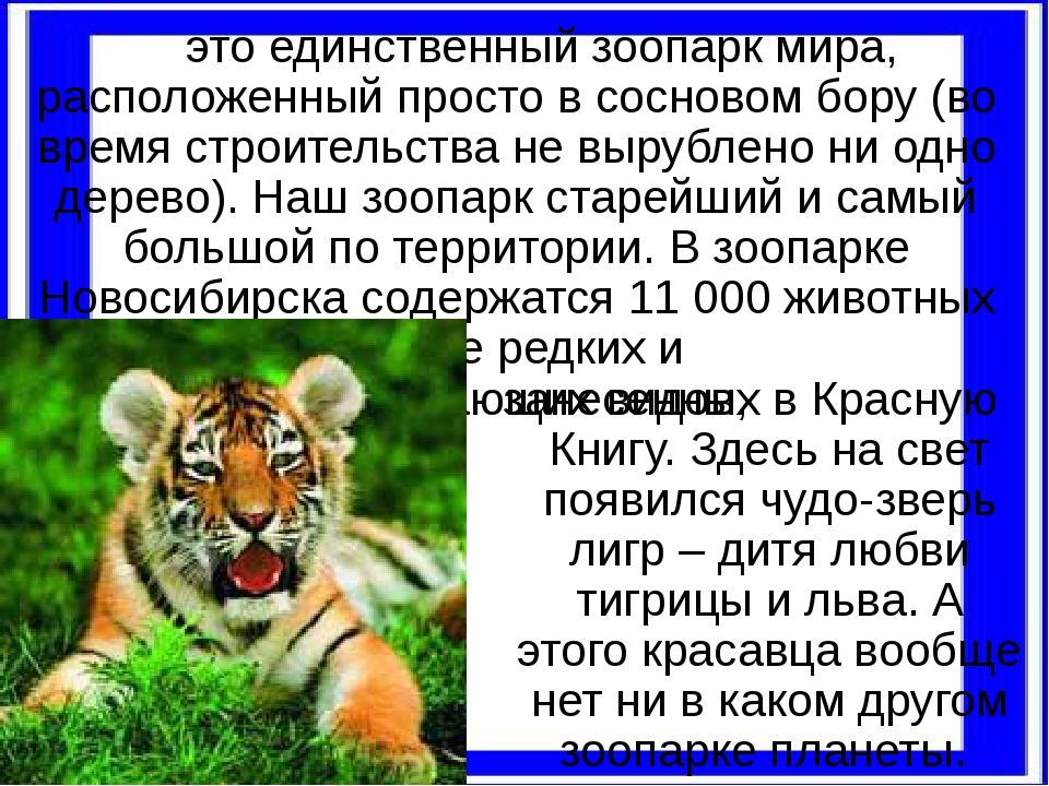 это единственный зоопарк мира, расположенный просто в сосновом бору (во врем...