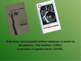Картины прошедшей войны оживают в повести Калинина «Эхо войны» (1963) и роман