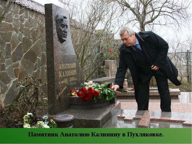 Памятник Анатолию Калинину в Пухляковке.