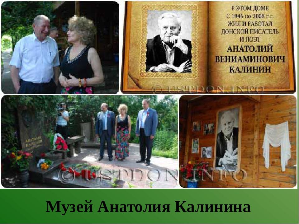 Музей Анатолия Калинина