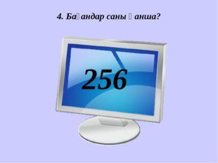 4. Бағандар саны қанша? 256