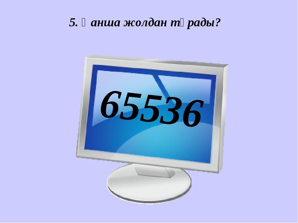 5. Қанша жолдан тұрады? 65536