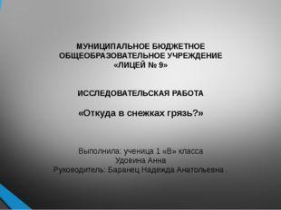 МУНИЦИПАЛЬНОЕ БЮДЖЕТНОЕ ОБЩЕОБРАЗОВАТЕЛЬНОЕ УЧРЕЖДЕНИЕ «ЛИЦЕЙ № 9»   ИССЛЕ