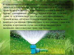 К пожелтению всей поверхности лужайки ведут иные причины. Зачастую это происх