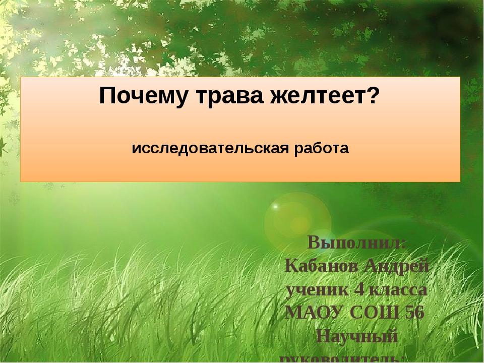 Почему трава желтеет? исследовательская работа Выполнил: Кабанов Андрей учени...