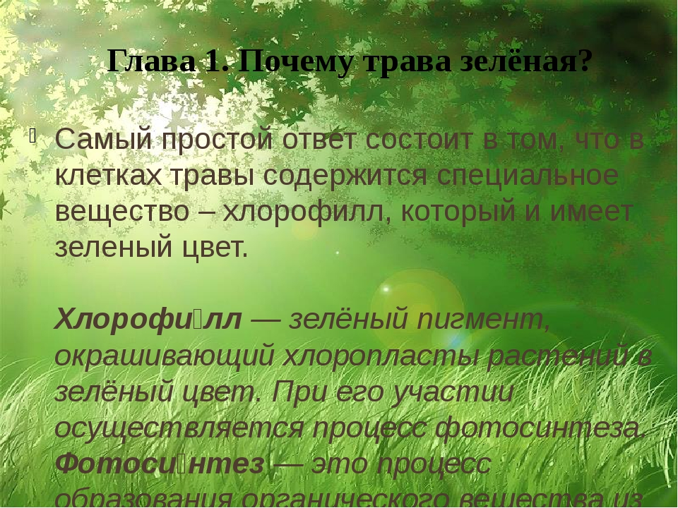 Глава 1. Почему трава зелёная? Самый простой ответ состоит в том, что в клетк...