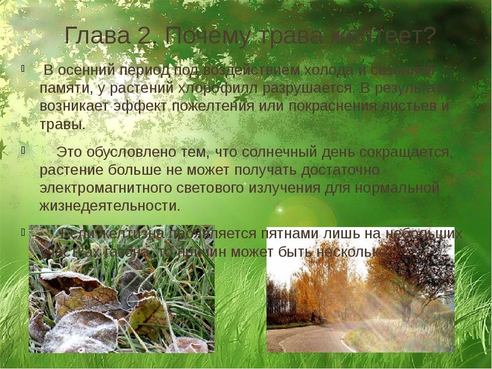 Глава 2. Почему трава желтеет? В осенний период под воздействием холода и сез...