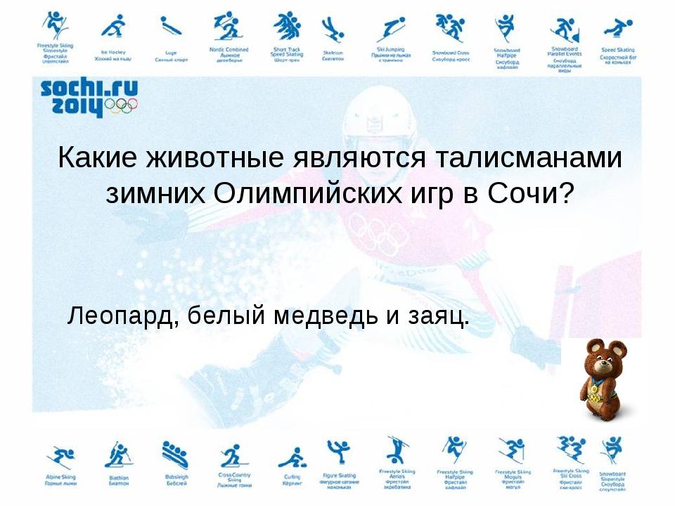Какие животные являются талисманами зимних Олимпийских игр в Сочи? Леопард, б...
