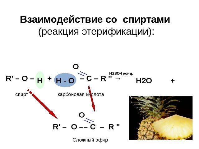 Взаимодействие со спиртами (реакция этерификации): O R' – O – + – C – R '' →...