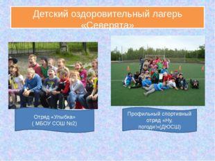 Детский оздоровительный лагерь «Северята» Отряд «Улыбка» ( МБОУ СОШ №2) Профи