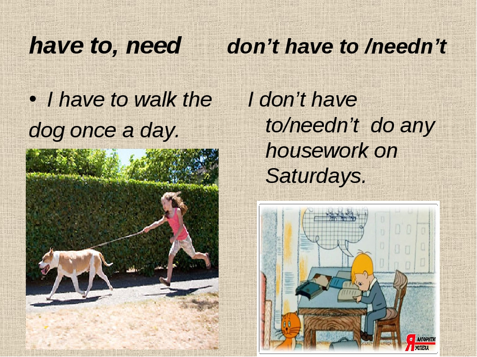 have to, need don't have to /needn't I have to walk the dog once a day. I don...