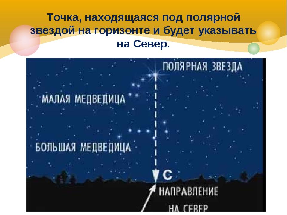Точка, находящаяся под полярной звездой на горизонте и будет указывать на Сев...