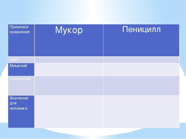 Сравнение пеницилла и мукора Признаки сравнения Мукор Пеницилл Цвет   Мицел...
