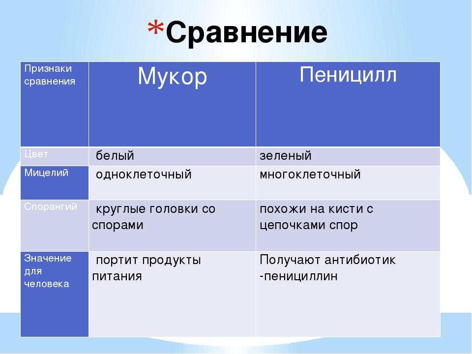 Сравнение пеницилла и мукора Признаки сравнения Мукор Пеницилл Цвет белый зе...