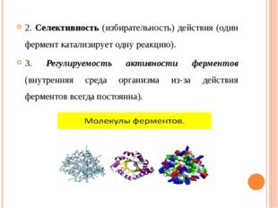 2. Селективность (избирательность) действия (один фермент катализирует одну р