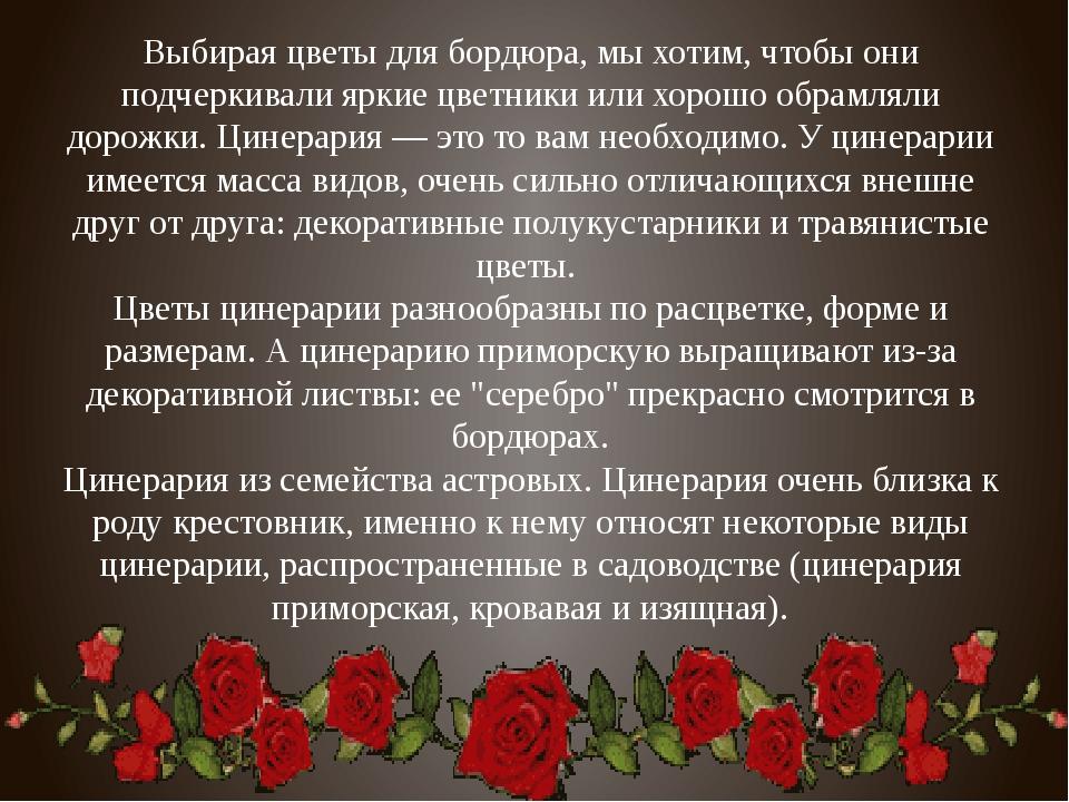 Выбирая цветы для бордюра, мы хотим, чтобы они подчеркивали яркие цветники ил...