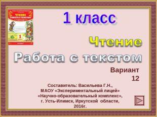 Вариант 12 Составитель: Васильева Г.Н., МАОУ «Экспериментальный лицей» «Научн