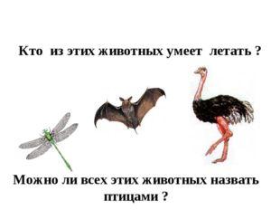 Кто из этих животных умеет летать ? Можно ли всех этих животных назвать птица